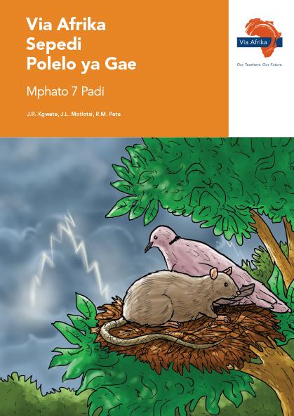 Via Afrika Sepedi Home Language Grade 7 Reader