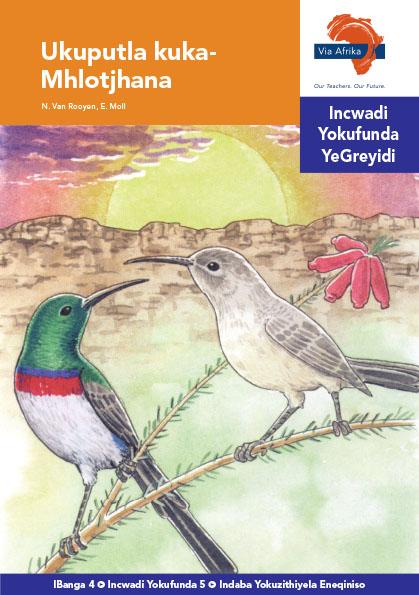 Via Afrika isiNdebele Home Language Intermediate Phase Graded Reader 5 Ukuputla kuku-Mhlotjhana