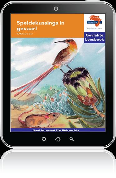 e-Boek (e-PDF): Via Afrika Afrikaans Huistaal Intermediêre Fase Gevlakte Leesboek 22: Speldekussings in gevaar!